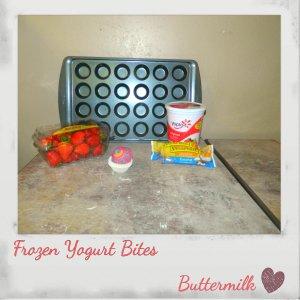 Frozen Yogurt Bites 1